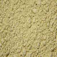 BREWERS YEAST, DRIED