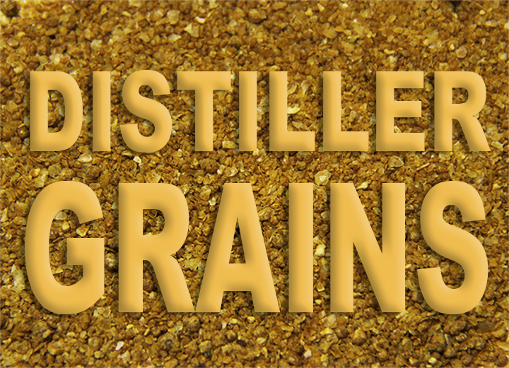 Distiller Grains