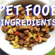 Pet Food Ingredients
